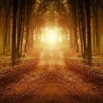 Meditation and The Razor Edged Path