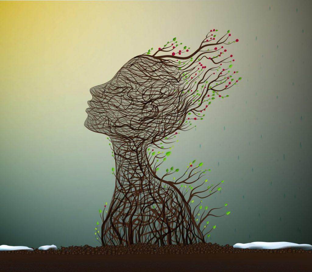 Psykosyntese - De syv kernebegreber