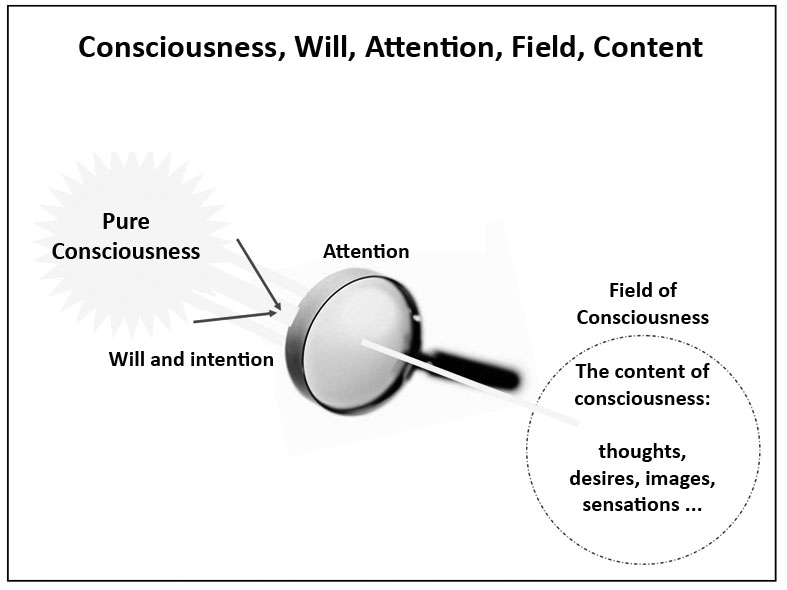Consciousness and the content of consciousness.
