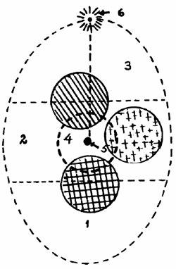 Assagiolis ovaldiagram og delpersonligheder