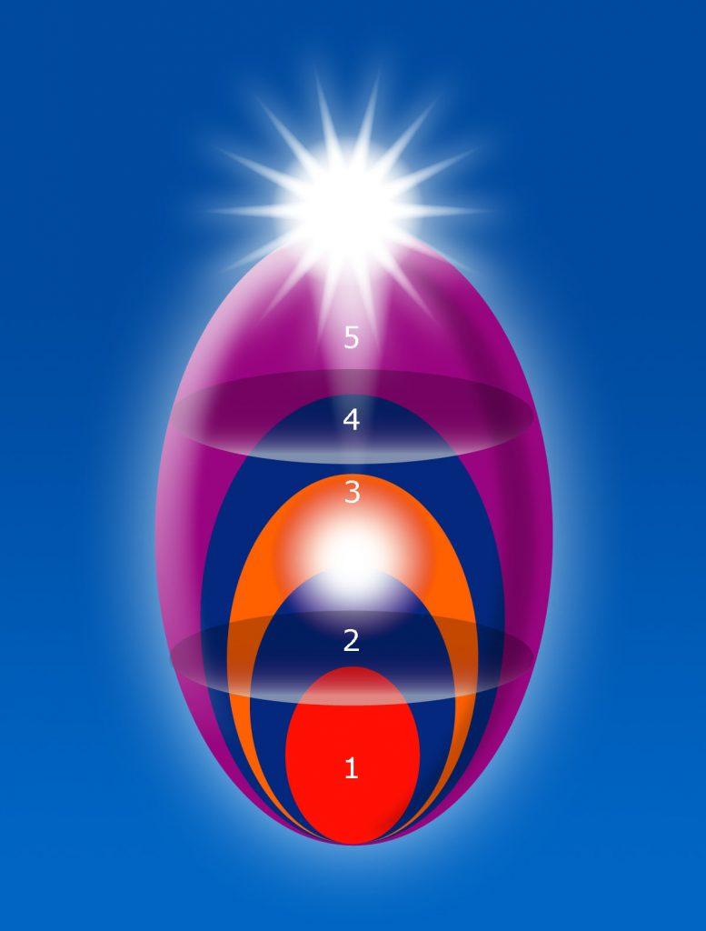 Ovaldiagrammet og holarkier