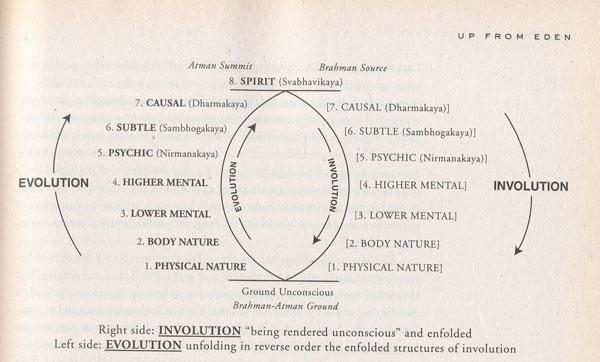 Involution and Evolution