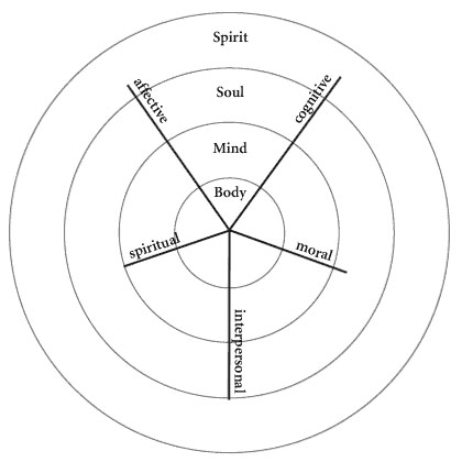 Ken Wilbers developmental lines