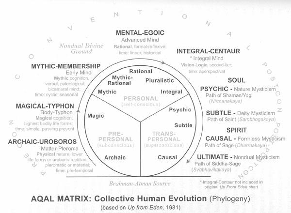 The Collective Interior – Cultural Development