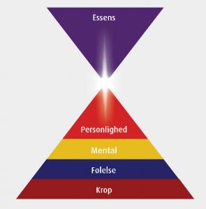 De fem psykologiske niveauer i mennesket