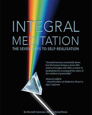 Integral Meditation: The Seven Ways to Self-realization –  Bookreview
