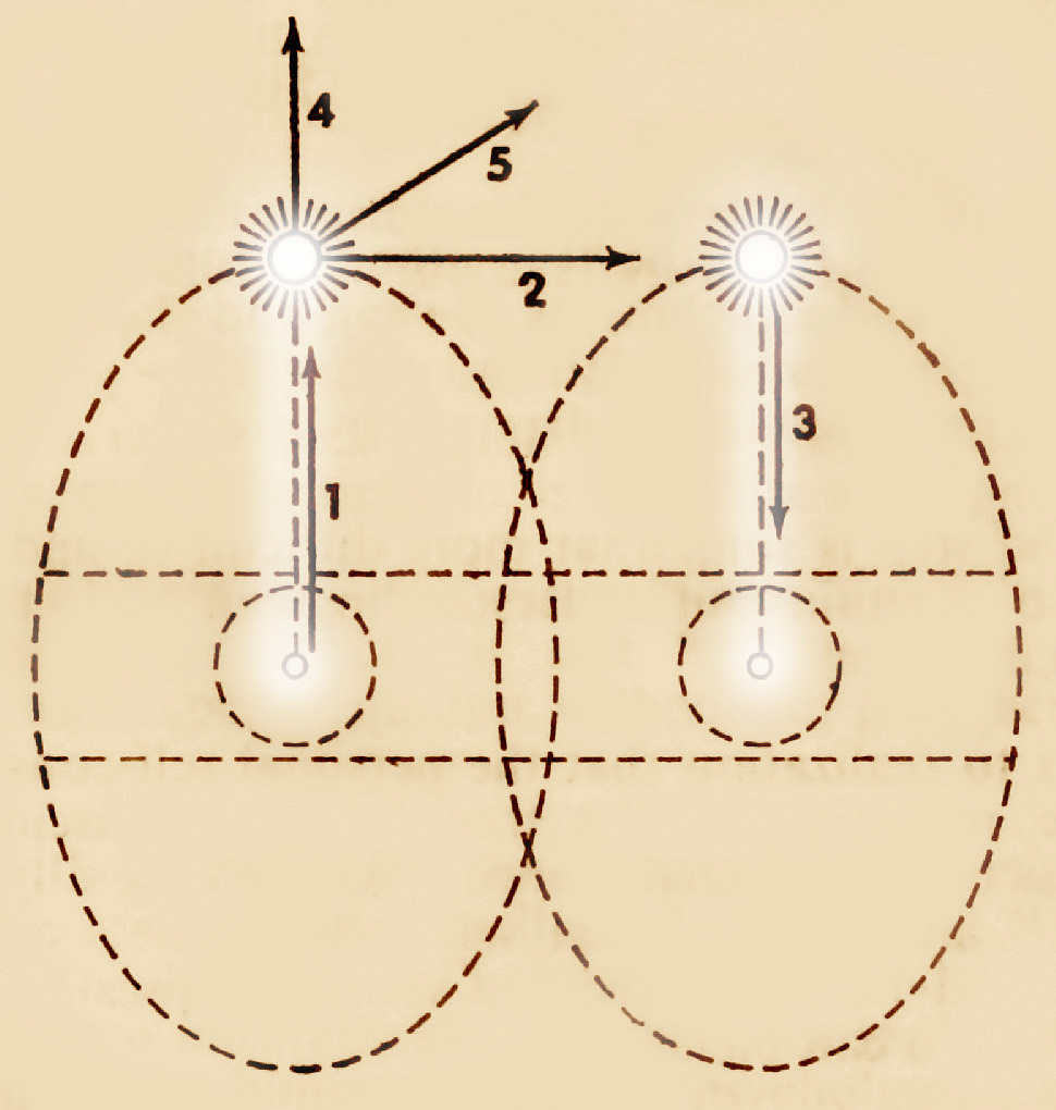 Assagiolis ovaldiagram i udveksling