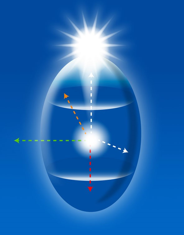 The Egg Diagram and the projection of the Self