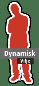 Den dynamiske energitype