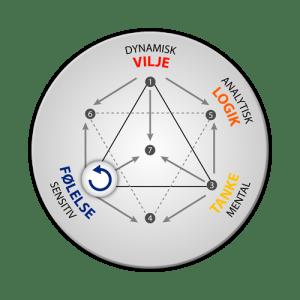 Energityper: integration af følelse