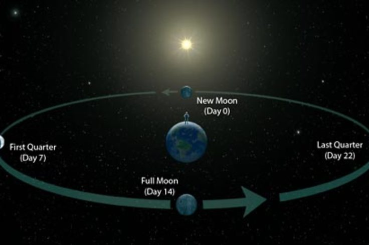 Moon cycles - new moon - full moon